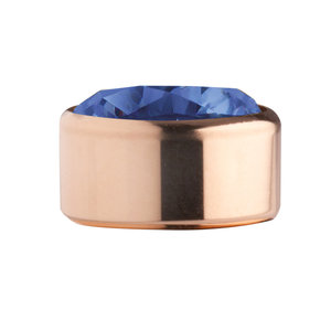 Blue Rose Gold Stainless Steel CZ Zetting Opschroef MelanO
