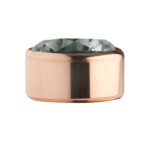 Antracite Rose Gold Stainless Steel CZ Zetting Opschroef MelanO