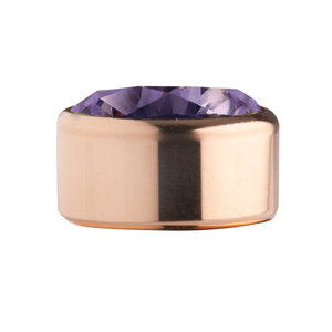 Purple Rose Gold Stainless Steel CZ Zetting Opschroef MelanO